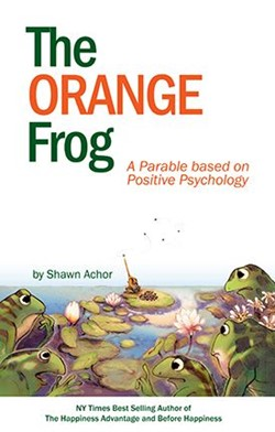 Image of The Orange Frog book.
