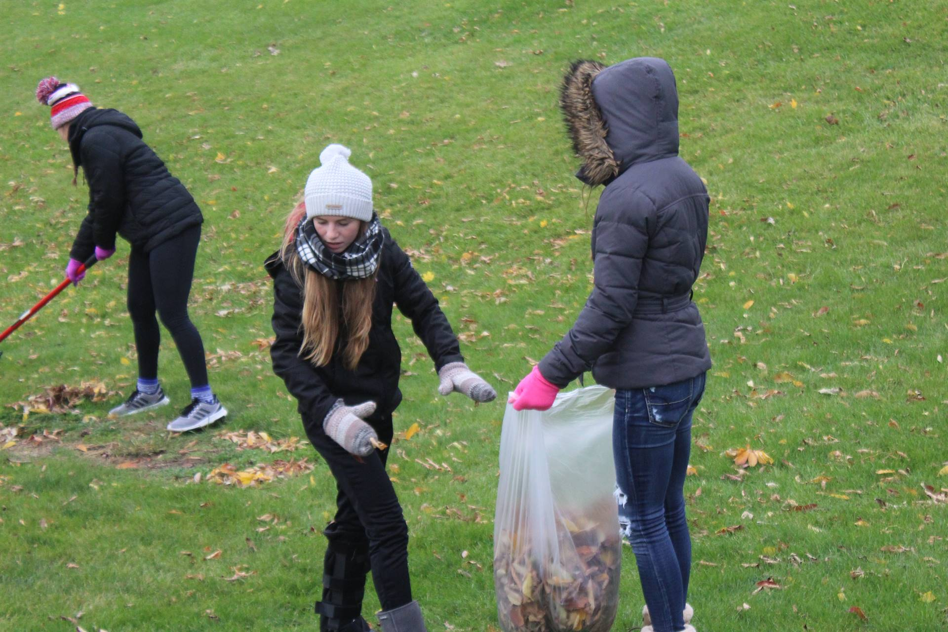 WDHS students raking during Bobcat Pride Day