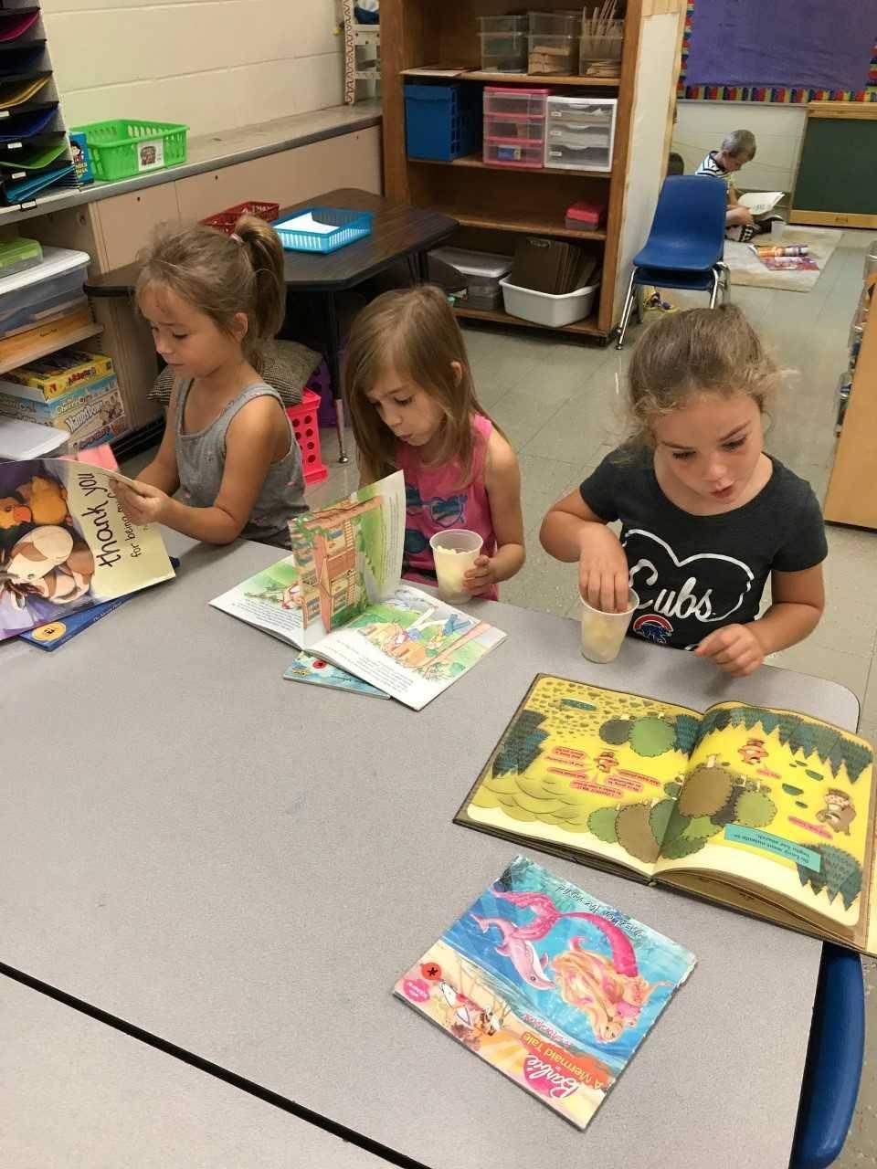 Kindergarten Brindle